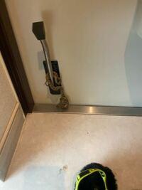 玄関のポストから蛇を入れられました。 この蛇何という蛇ですか? 毒はありますか?  回答お願いします。