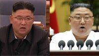 北朝鮮の金正恩総書記がやつれたって報道されています。 しかし北朝鮮国民は国連の経済制裁で食糧難になり餓死者が続出しています。  金正恩はビールや肉類が好きで贅沢な食生活で体重は100Kg以上だったそうです。  国民の反発を和らげるために痩せたんじゃないでしょうか?