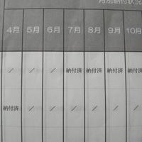 ねんきん定期便の月別納付状況欄の 「/」はどういう意味ですか?