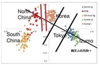 遺伝学的に「日本人」と、「中国人、韓国人」とは、大きく、かつ明確に異なる「違い(遺伝的距離)」があります。 . これについてご意見とかありましたらお願いします。 . 注:「大きく、かつ明確に異なる」は、東北大学の論文をそのまま使いました。 . 2003年に「ヒトゲノム」のDNA塩基配列が解明され、それまでは、ゲノム中の僅かな範囲しか調べられなかった人類進化の研究において、一挙に30億個の塩基...