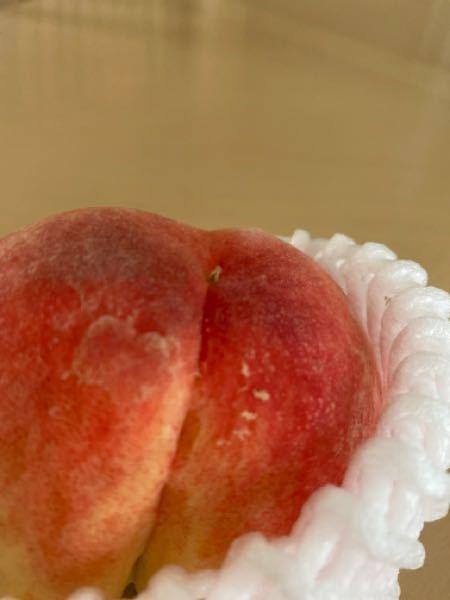 桃の季節がやって来て、我が家も沢山の桃を買いに行きました。 食べているうちに、虫食いを見つけてそれ以来気になり 良く見てみると桃の1番上の辺りに何がある、写真のものは何なんでしょうか? 知っている方がいらっしゃいましたら、教えて下さい。 割れ目の上部分の小さな出っ張りです。