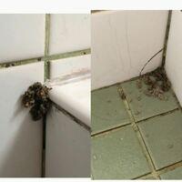 風呂場にこんなものがふたつあったのですが、何かわかる方いますか??