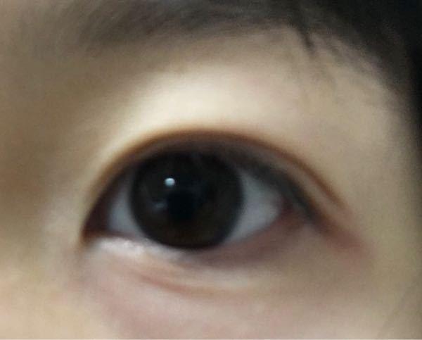 この目の形に似合うメイクを教えてください。 丸くて垂れてる目がコンプレックスで、色々自分なりに研究してはいたのですがタレ目が余計に目立つばかりで… なるべくカラコンは使わずに盛りたいので、アイシャドウやアイラインの書き方などを教えてくれると嬉しいです。 パーソナルカラーは恐らくイエベ春だと思います。 よろしくお願いします。