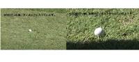 先ほどの、野沢真央の13番の4打目ですが、3打目でディポットの中に入った気がするのですが、4打目を打つ前には出ているようですが・・・・。 どう思いますか? 何か今日は救済措置があるのでしょうか? 左の写真は、左がピン方向。右の写真は上がピン方向です。