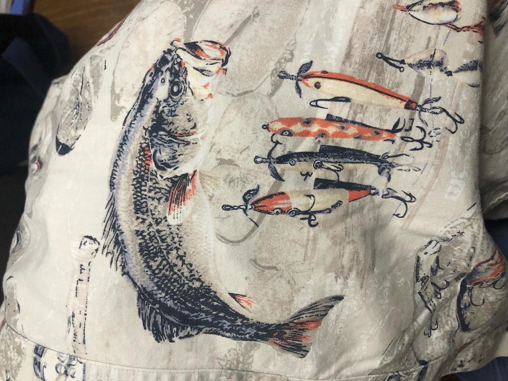 この魚の種類は何ですか?
