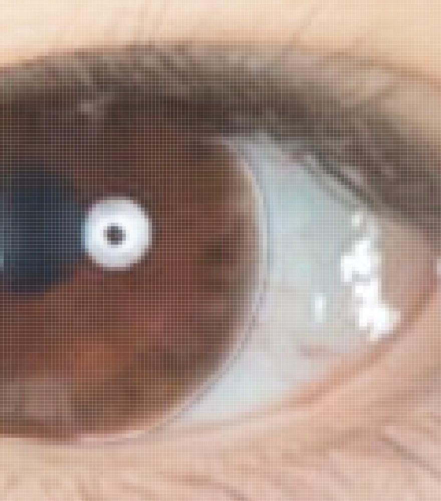 Photoshopの選択範囲についての質問 ※目もとのどアップがあります。 . 瞳の色を変えるために黒目に合わせて選択範囲を設定したのですが、範囲を解除したところ、線が残ってしまい困っています。(カラコンの縁みたいになっている部分です。) 解決方法が分かる方いらっしゃいましたら助けてほしいです。 よろしくお願い致します。