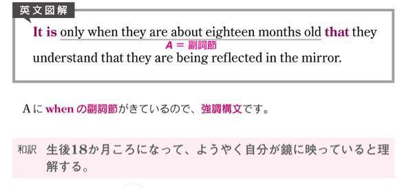 この文の訳について質問です。 「only when〜」の部分を訳すと「彼らが生後わずか18ヶ月のとき」になると思うのですが、解答には「生後18ヶ月ころになってはじめて」と書いてあります。 なぜでしょうか?