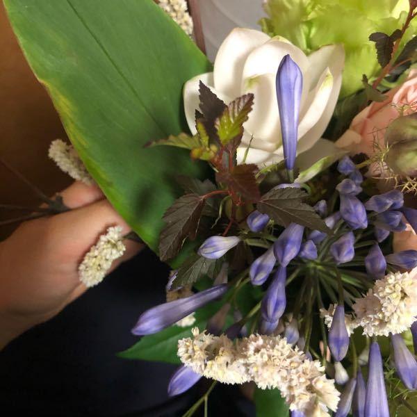 お花の名前を知りたいです。 よろしくお願いします。 手前の猫じゃらしの形に似た白いお花、 紫のお花、 そして後ろの白いお花です。 よろしくお願いします。
