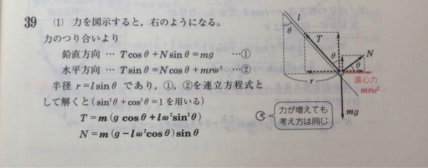 この連立方程式の途中式を教えてください!