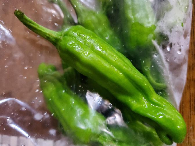 お姑さんから大量にこの野菜を貰いましたがどう料理していいかわかりません。この野菜の名前もわかりません。 姑さんに聞くべきでしょうが、またそんな事もわからないの!と怒られそうなのでこちらで教えてください。