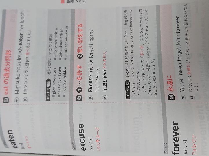こんな感じの英語単語帳使ってるんですけど例文もよんだ方がいいですかね?