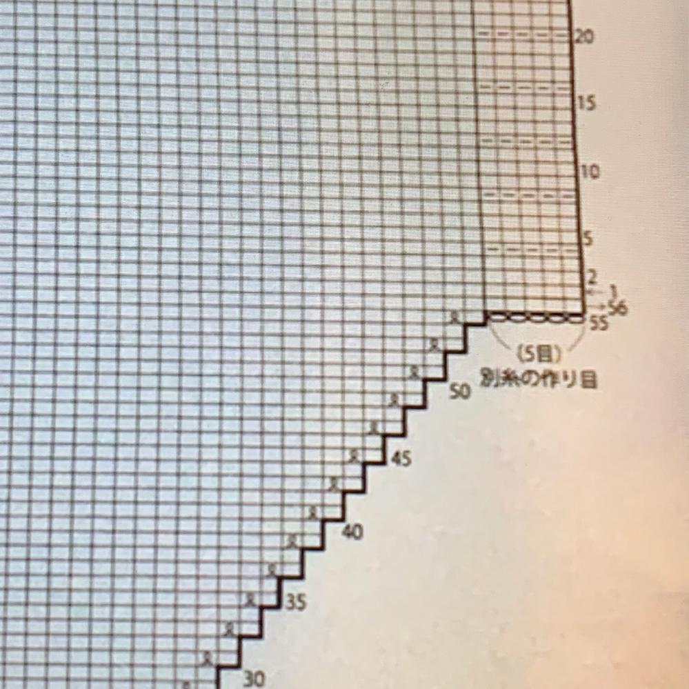 この別糸の作り目の付け方が分かりませんm(._.)m教えて頂きたいです。 56段目で別鎖の裏目を拾えば良いですか?
