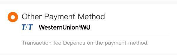 これってどう言う支払い方法ですか