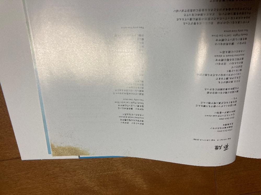 スカイピースの青青ソラシドリームのフォトブックについての質問なのですが、後ろの方にある歌詞ページにこのような模様はありますか? しばらく本棚にしまっておりこの模様がカビなのか模様なのかわからなくなりました。同じものを所持してる方、お手数ですがこの模様があるか教えて欲しいです。