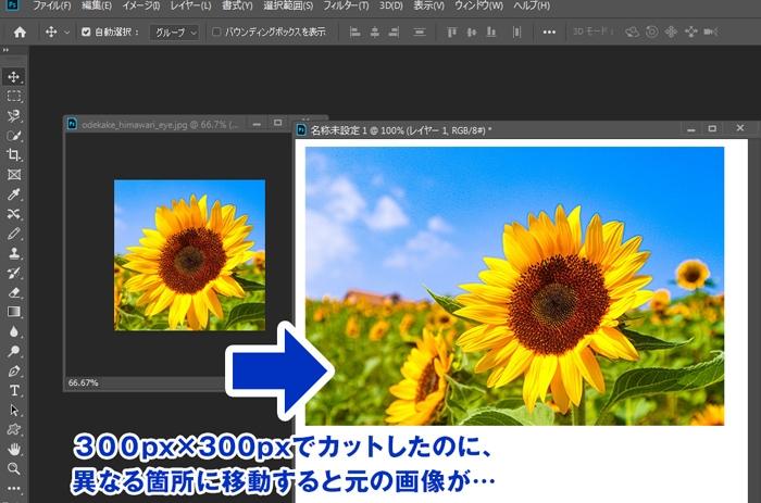 フォトショップCC2019 でカットの際に設定がなぜかおかしくなりました。 例の画像を付けますが、 例えばこのヒマワリの画像ですが 1. 300px × 300px でカットしたものを 2. 異なるレイヤーに移動した際に 今までは 同じサイズ300px × 300px が移動してくれていましたが いきなり、元の原板が移動してしまう(カットしたのにカットされていない)となります。 色々と設定を調べましたが、直らず、 ご存じの方、ご教授お願い致します。