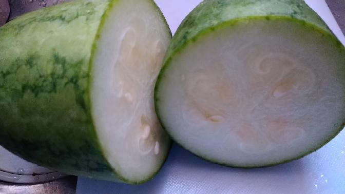 家庭菜園をしてます。 小玉スイカの苗ときゅうりの苗をホームセンターで購入しました。 きゅうりは収穫も終盤。 スイカはやっと実がなり10cm×20cmに育ったので昨日初収穫。 先程切ってみたらスイカの香りがするんですが…… きゅうり?瓜?ハーフ? 食べてみたら甘くないスイカの歯ざわりです。 ググっても見当たりません。 お漬け物にするしかないのでしょうか?
