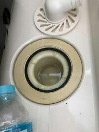 防水パンと排水管が繋がってないのですがこれは水道工事?洗濯機設置?の時に業者が開けてくれるのでしょうか? 写真の通り防水パンの下は完全に蓋されており、トラップごと引っこ抜こうとも入り口で引っかかり取れません 試しに水を流しても全然流れないです  ちなみに今日引越しをして気付きました