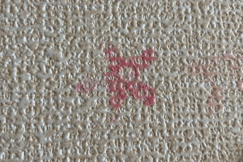 「ねばモン」という商品のような、スライム素材の壁などにくっつけて遊ぶ玩具を持っており、 子供が部屋の壁紙に貼り付けて遊んでいたのですが、 ピンク色の物だけ色素沈着してしまい、困っています。 どう...