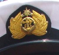 海上自衛隊(海上保安官)のエンブレムだと思うのですが何か分かる方はいますか?