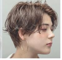 できれば美容師さんにお聞きしたいのですが、波状毛(うねり系)の天パの女がハンサムショートにしたい!となった場合、実現は可能でしょうか…? 齢20にしてようやく天パと向き合おうという気持ちになり(最後に縮毛矯正をかけたのは1月頭頃)、せっかくなら天パを活用したショートにしてみたく…。ですが添付した画像のように上手くいくはずがない…というさまざまな不安が付きまとってきてしまい、なかなか美容室を予...