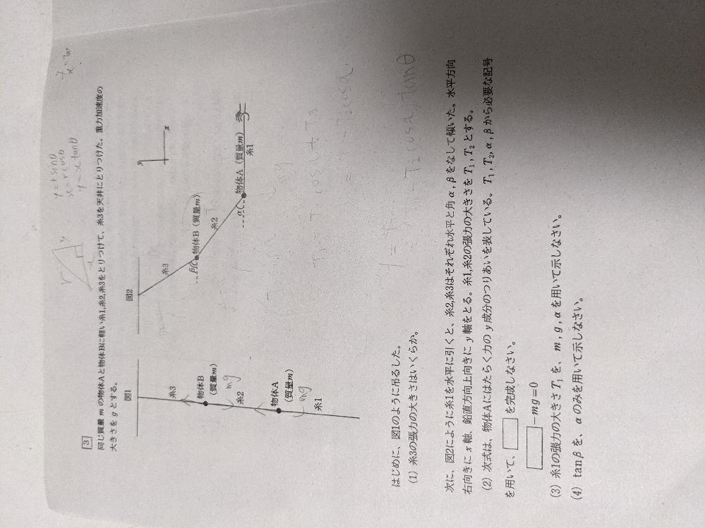 物理の問題です。(2)以降が全く分かりません。答えしか配られず困っています、ちなみに(2)T2sinα (3)mg/tanα (4)2tanα だそうです、どなたかお願いします