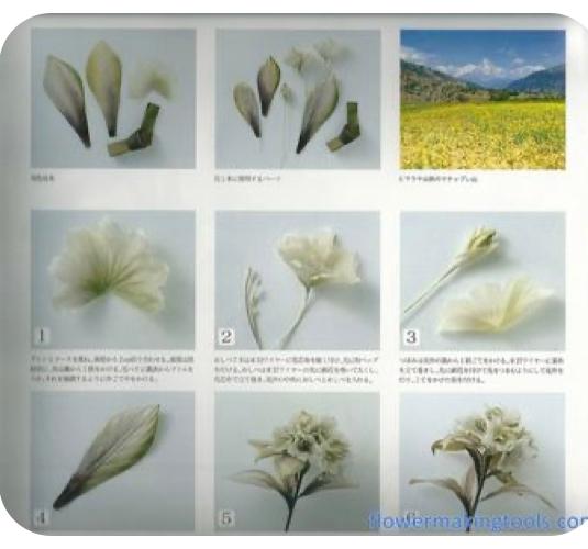 この画像の書籍名を知りたいです(布花、アートフラワー、染め花の作り方の本です) 布の花の作り方の写真の一部、右上のところに世界の色々な所の風景写真がありコメントが添えてあります。