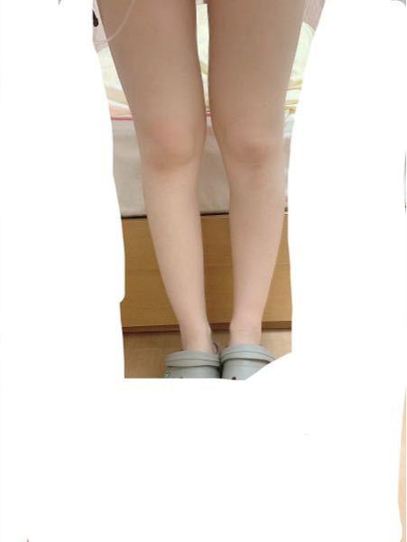 画像の足は太い・やや太い・普通・やや細い・細い のどれに当たりますか?