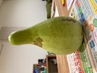 この野菜の名前を教えてください。