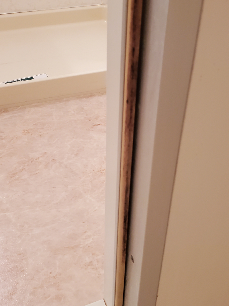 お風呂場の扉の写真のようなカビ?はどうしたら落とせますか?
