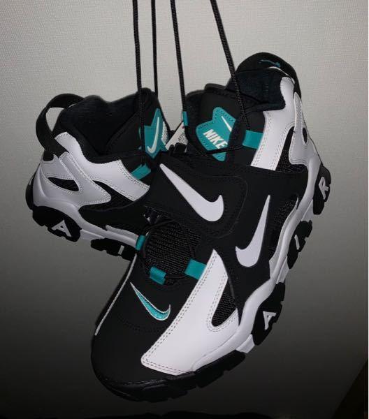 この靴って何って調べたら出て来ますか?
