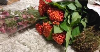 切花で購入したのですが、花の名前を忘れてしまいました。。。(><) 詳しい方教えていただけると嬉しいです。 よろしくお願いいたします!