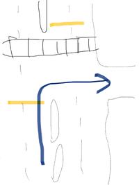 この場合は赤信号でも右折していいのでしょうか? 停止線は手前(黄色)なのですが、 進行したい方向は横断歩道と被ってません。  信号が赤だったので、右折したかったですが 停止線で止まっていたら、クラクションを鳴らされました。 わからないので教えてください。