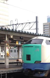 なんでSLが残っているのに国鉄型電車(485系や583系など)や気動車(キハ183系など)が引退になったのですか。個人的には国鉄型のほうが好きです。