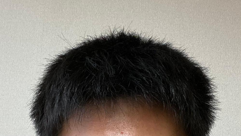 この髪型から伸ばしていけばマッシュにすることはできますか? 髪の毛は硬いです。 もしできるのであればどのような手順でしていけばいいか教えていただきたいです。