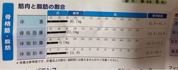 158センチ、28歳女性です。体組成を測りました。 この結果だけ見て、どんな体型を想像しますか?