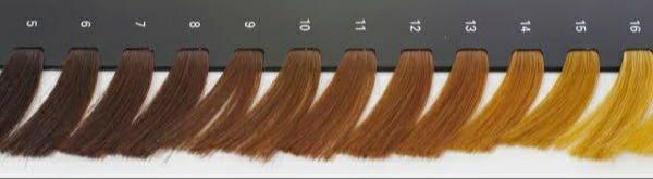 ブローネのミッドナイトアッシュに染めたいのですが、黒髪だと色が入らないとネットで見てブリーチはしたくなかったので画像の8か9くらいの茶色に染めました。(外で見るともう少し明るかったです) 今の髪色で染めても色は入らないですか? 入らない場合は、もっと明るい茶色にしたら色は入りますか? なるべくブリーチはしたくないです。