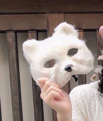 11月に修学旅行があるのですが、京都着物レンタル京越さんでこのようなお面の貸出はありますか??