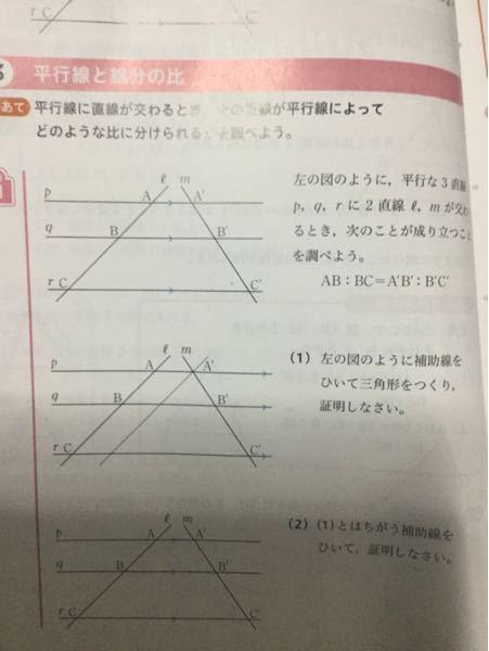 数学で、平行線と線分の比で活動1の(1)と(2)が分からないので教えてください!!