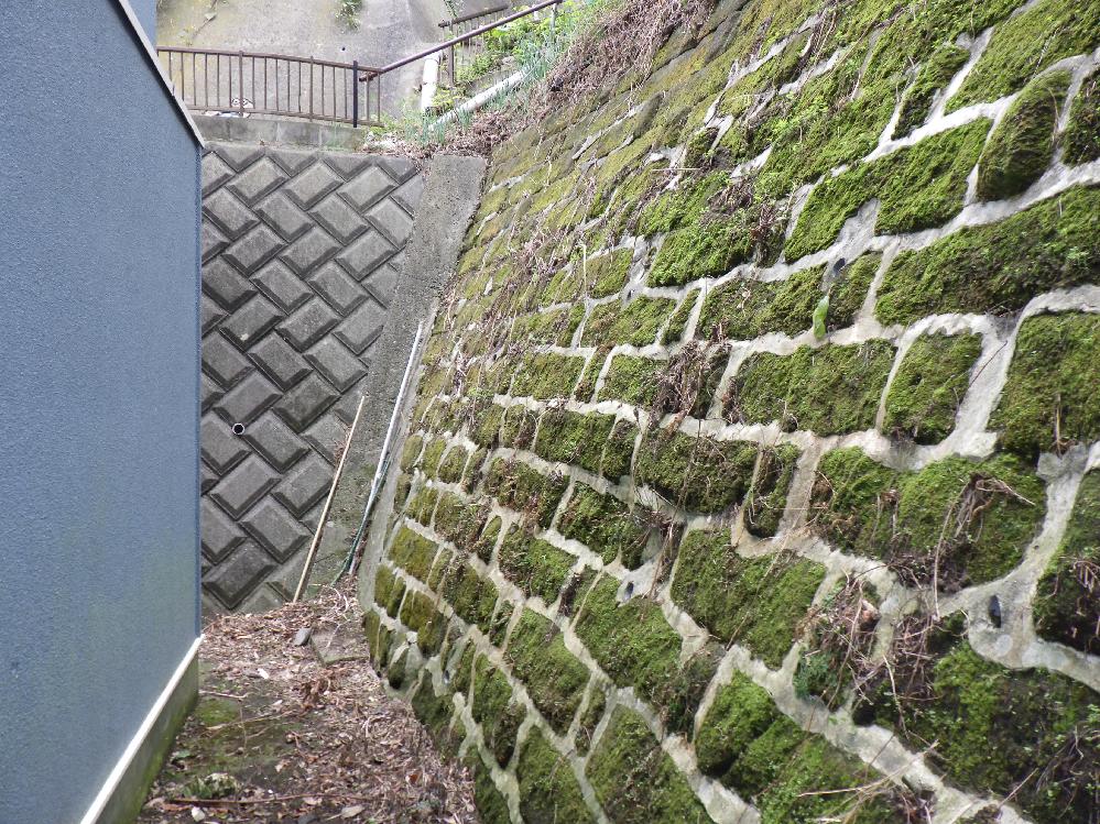 このようなガケの石積は何と言いますか。古い石積にモルタルで目地を入れているようです。多分半分より上は盛土だと思います。