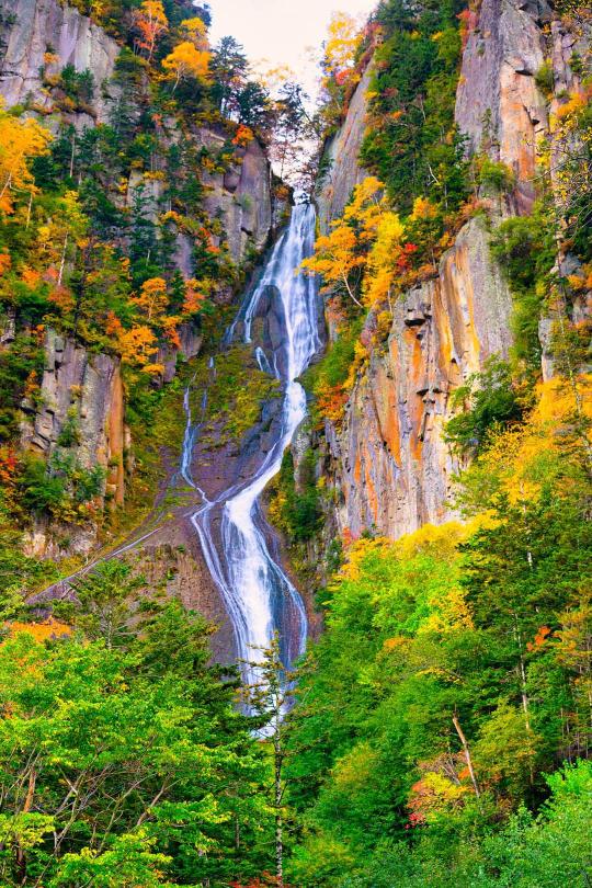 北海道旅行を3泊4日で計画しております。 希望は札幌、小樽、旭川、富良野の観光です。 スケジュールを立ててみましたが、きびしい所があればご指摘ください。よろしくお願いいたします。 来月という中途半端な時期に北海道にレンタカーで旅行します。(ラベンダーも紅葉も見れず…^^;) まだまだ先ですが宿泊地、スケジュールの変更ができますのでご意見くださいm(__)m 夫婦&2歳児の3人家族旅行です。 一日目 千歳着 小樽運河散策 小樽駅近くホテル泊 (羽田6:30発~12:00発の便と時間に幅がありすぎです。仮に12:00発の便になったとすると レンタカー手続きなどでほとんど観光できないでしょうか?) 二日目 札幌周辺観光 中央公園近くホテル泊 大倉山ジャンプ台&ウィンタースポーツミュージアム、羊が丘展望台 中央公園 (お勧めスポットあれば教えてください。) 三日目 旭山動物園 札幌発6:00 高速で旭山動物園着9:00(途中休憩) 動物園14:00発 白金温泉泊 美瑛を通りますがファーム富田周辺の道が混むとあり不安です・・・ 景色を楽しむ時間的余裕はありますでしょうか? 四日目 白金温泉発 富良野経由 千歳空港 富良野散策 かんのファーム または 彩香の里 アンパンマンショップ、ジャム工場 どこかの展望台 三笠ICまでの国道はどのくらい時間がかかるか・・・ 出発は夕方の便です。 小樽、旭山動物園、富良野♪、アンパンショップ(娘が…) は必ずいきたいです^^ 四日目のスケジュールがきつきつな気がしています。 ちなみに運転はすべて主人です。 あと主人が登別にも寄りたいと言っていましたが遠すぎとのことで却下しました^^; 札幌観光を削れば可能でしょうか? 北海道は広いので地図とガイドブックとにらめっこです;; 長文大変失礼いたしました