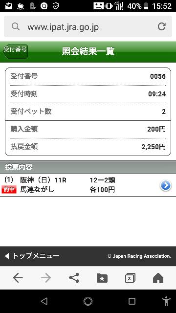 東京最終 12ー1.2.3.10.11 なにかいますか?