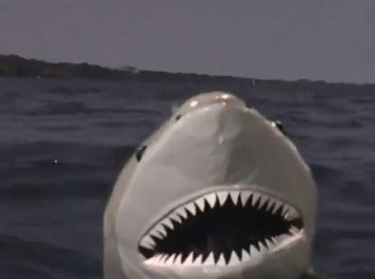 良い声で歌い出すサメの映画のタイトルを、ご存知の方いれば教えていただきたいです。