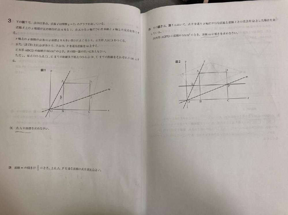 中学数学です。(3)の解き方を詳しく教えて頂けないでしょうか? 答えは6分の1です。