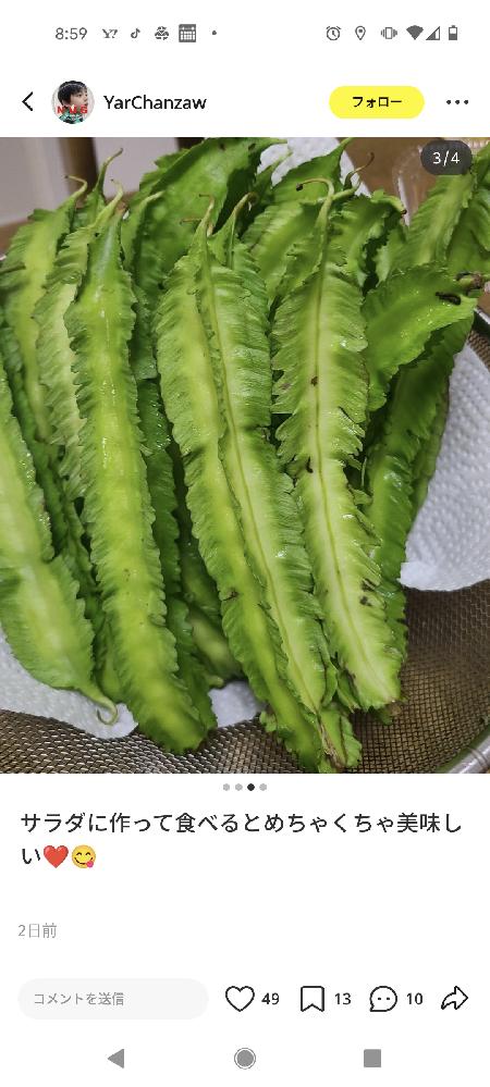 この野菜の名前教えてください。