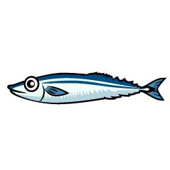秋刀魚といったら何色のイメージを思い浮かびますか?