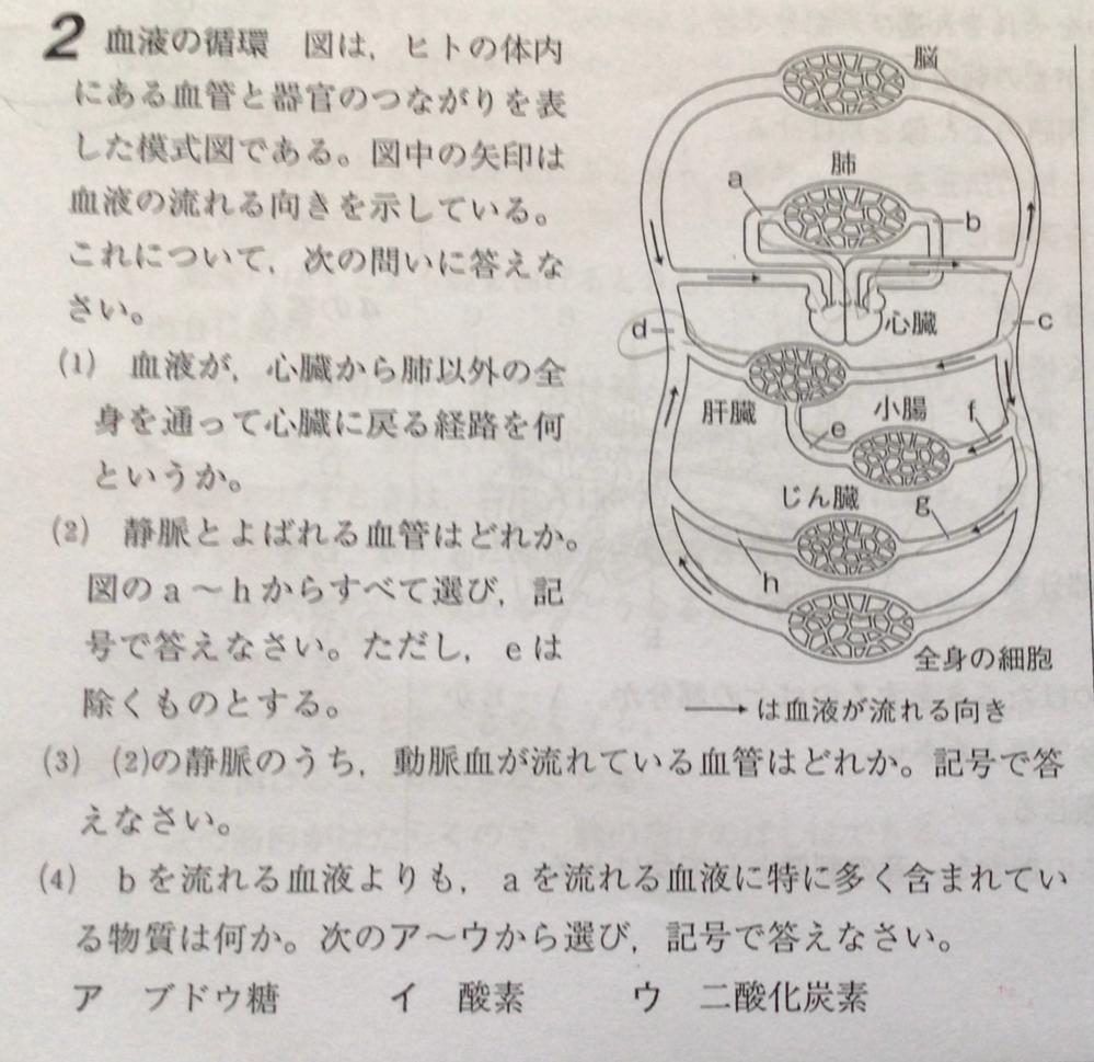 理科の問題です。 下の写真の(1)〜(4)の答えと解説をお願いします。