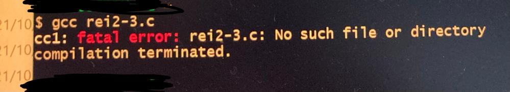 C言語で作ったプログラムをファイルを指定して実行しようとしたのですがこのような表示が出ました。詳しい方対処法教えて頂きたいです。