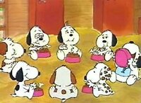 スヌーピーの兄弟の名前を教えてください。 できれば、食器を手でもって食べている犬から、右回りに。