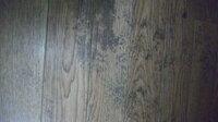 クッションフロアのカビを落としたいです。 先ほども質問させていただきましたが、画像をつけた方が分かりやすいかと思い画像をつけます。。。 床がぬれていたようで、日の当らないところにカビが生えてしまいました。 キッチンハイター、カビキラーは効きませんでした。 こすってもだめでした。 模様替えをしたので、余計目立つようになってしまいました…。 染み込んでいるみたいなのでもう駄目ですかね?...
