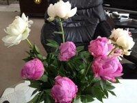 【芍薬の切花について】 母の日は、毎年「芍薬」を、贈ります。 ときどき、せっかくたくさん贈ったのに、蕾が玉のまま開かないことがあります(>_<) 鋭角に水切りをしてみたり、短くしてみたりするのですが開きません。 今年は、安全のためふっくら膨らんだ状態のものを購入したのですが、まだギュッとした蕾のものはどうしたら綺麗に開いてくれるのでしょうか?